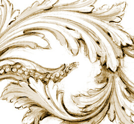Acanthus scroll drawn by Adam Thorpe